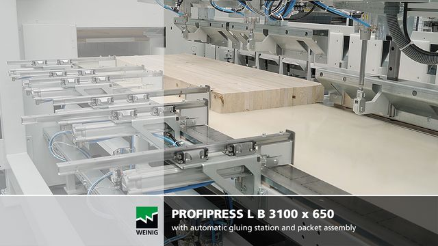 Weinig ProfiPress L B gluing press Ligna 2019 Video